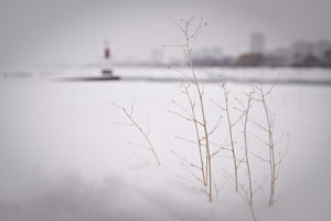 Lake Michigan Lighthouse in Winter